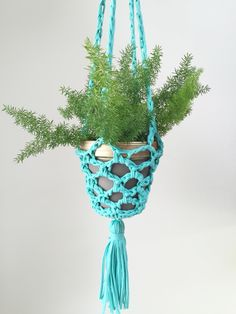 DIY: crocheted t-shirt yarn plant hanger