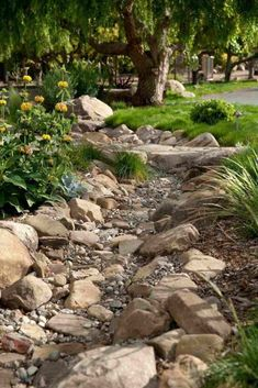 Low Water Landscaping, River Rock Landscaping, Small Front Yard Landscaping, Driveway Landscaping, Low Maintenance Landscaping, Low Maintenance Garden, Landscaping With Rocks, Landscaping Ideas, Acreage Landscaping
