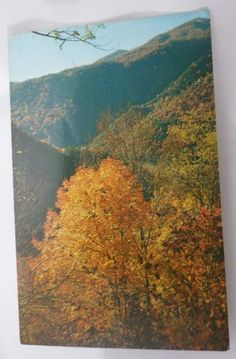 AUTUMN-IN-WESTERN-NORTH-CAROLINA-MOUNTAINS