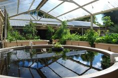 Forever Garden: Clear roof over grow beds. This one is an aquaponics system, which might be fun...