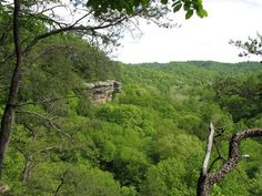 6. Conkle's Hollow (Hocking Hills State Park)