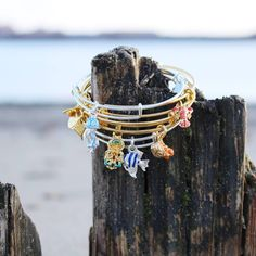 ALEX AND ANI CHARITY BY DESIGN Deep Sea Wonders Collection supporting UNICEF…