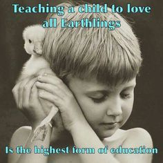 teaching a child to love all earthlings is the highest form of education #vegan Vegan Memes, Vegan Quotes, Vegetarian Quotes, Vegan Facts, Vegetarian Lifestyle, Why Vegan, Vegan Animals, Animal Quotes, Pet Quotes