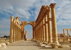 Palmyra - Damascus, Syria | This colonnade illustrates the i… | Flickr