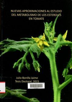 Nuevas aproximaciones al estudio del metabolismo de los esteroles en tomate / Julio Bonilla Jaime ; director: Albert Boronat Margosa. [Programa de Doctorat en Biotecnologia — Tesi doctoral - Universitat de Barcelona. Facultat de Biologia, 2015]   #tesisdoctorals