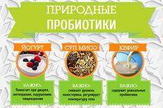 Восемь лучших природных пробиотиков | Правильное питание | Здоровье | АиФ…