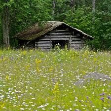 Niitty, common view in Finland's countryside . Beautiful Places, Beautiful Pictures, Country Landscaping, Summer Dream, Concrete Jungle, Landscape Pictures, Old Barns, Cabins In The Woods, Country Life