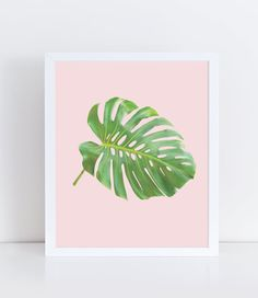 Minimalist modern wall art featuring a Monster leaf with a pink background perfect for home decor.  This product is a digital file you will not