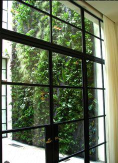 love the doors drapes u0026 greenery! & black metal doors | Raam | Pinterest | Black metal Doors and Metals
