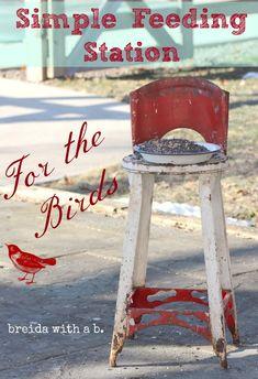 the doors, back doors, bird feeders, bird of paradise, old chairs, birds, flowers garden, high chairs, cold weather
