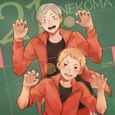 Lev and Yaku