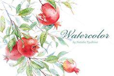 Pomegranate by Natalia Tyulkina on Creative Market