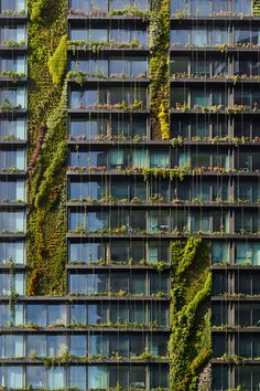 French botanist Patrick Blanc, credited with popularising the design trend, has installed some of the most striking vertical gardens in the world, including Syd