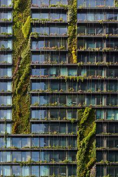 Nine vertical gardens around the world
