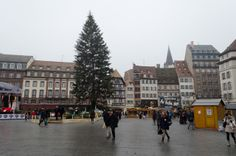 Strasbourg's iconic Christmas Tree in Place Kleber stands 30 metres tall. Photo © 2013 Aaron Saunders