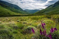 Glen More - Isle of Mull - Scotland.