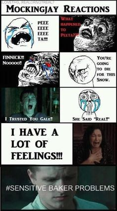 Mockingjay reactions: Spot. On.
