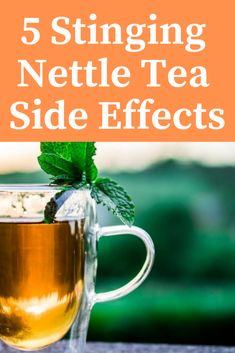 5 Stinging Nettle Tea Side Effects: Things You Should Know - Miranda Gapper Nettle Benefits, Tea Benefits, Nettle Recipes, Macro Nutrition, Grain Bowl, Herbal Tea, Side Effects, Superfoods, Herbalism