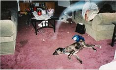 Living room ghost - Mists and Vapours - Gallery - Ghost Mysteries Discussion Forums