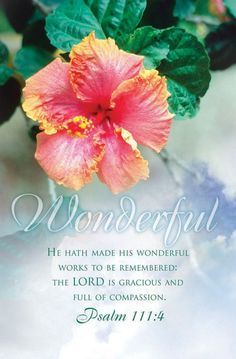 Psalm 111:4 He has caused his wonders to be remembered;     the Lord is gracious and compassionate.