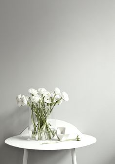 Ranunculus/  vase vase by norm for menu