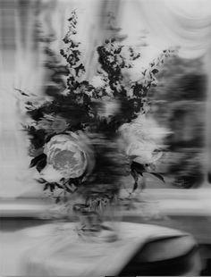 La fotografía etérea y misteriosa de Takashi Kawashima                                                                                                                                                                                 Más