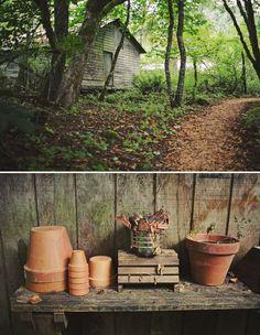 plant pots / terracotta / too twee?