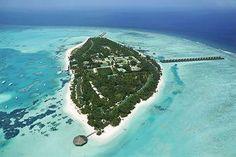 Meeru Island Resort, heading here for our honeymoon!