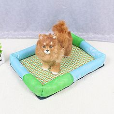 Bigbig Home Cool Summer Dog Bed Breathable  Comfortable Pet Bed Outside Dimensions ** Check out the image by visiting the link.