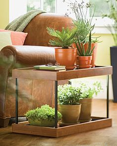 Sun Shelf: Stackable shelves with lighting underneath work great as side tables. Solution for low light houses/apartments that still want plants