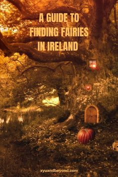 In Ireland the fairy folk are considered very real and there is much evidence to support the fact that Irish fairies do exist Travel Trip Travel Travel Travel Ireland Travel Guide, Travel Tips For Europe, Best Travel Guides, Europe Packing, Travel Pics, Travel Stuff, Packing Tips, Travel Packing, Solo Travel
