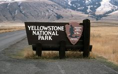 The Fuehrer's Park Rangers 'Gestapo Tactics' Trap Senior Citizens At Yellowstone Entrance Signage, Park Signage, Wayfinding Signage, Yellowstone National Park, National Parks, Yellowstone Camping, Places To Travel, Places To Go, Adventure Bucket List