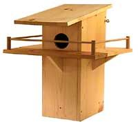 squirrelhouseplans How to Build a Tree House for Squirrels