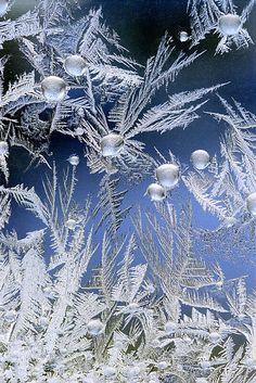 6) Beauty of Hoar Frost - Crystalline Garden...