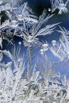 6) Beauty of Hoar Frost    -   Crystalline Garden...