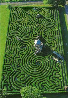MAZE: An intricate, usually confusing network of interconnecting pathways, as in a garden; a labyrinth