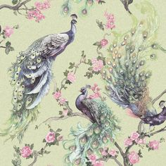 This Menali Peacock Wallpaper features detailed peacocks and a floral pattern in blue, green and pink on a pale pink background with a lightly textured glitter finish Peacock Wallpaper, Bird Wallpaper, Glitter Wallpaper, Green Wallpaper, Paper Wallpaper, Textured Wallpaper, Gothic Wallpaper, Butterfly Wallpaper, Pink Peacock