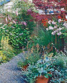 allée de jardin en gravier avec végétation abondante autour