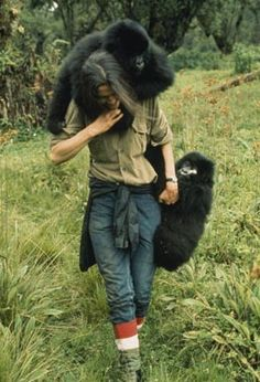 Dian Fossey - my gorilla top women  - love her and all she did and inspired
