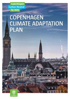 Copenhagen Climate Adaptation Plan:  http://en.klimatilpasning.dk/media/568851/copenhagen_adaption_plan.pdf
