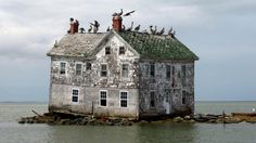 Chesapeake Bay is speckled with small islands, and for years Holland Island had one of the largest populations, with more than 360 people in 1910. there were more than 60 homes and other buildings, but for decades the island has been sinking into the surrounding waters.
