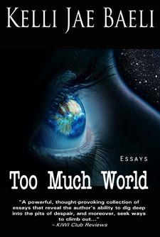 ludwig van beethoven essays