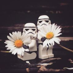Sunny troopers