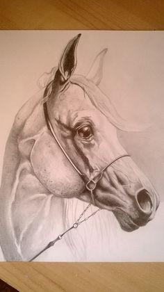 Rysunek ołówkiem. A4.