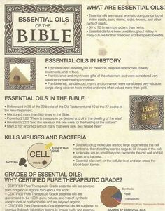 Essential Oils of the Bible! www.greenlivingladies.com www.mydoterra.com/303320