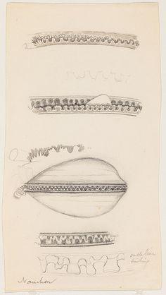 All sizes | Mollusk (Naushon Island, Mass.) (7 drawings)