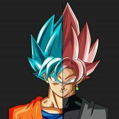 Goku & Goku Black