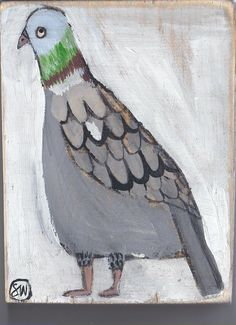 I love pigeons.