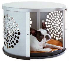 BowHaus Modern Dog Furniture