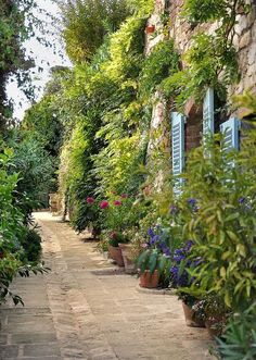 My inner landscape - Grimaud - Provence - France Places Around The World, Around The Worlds, Jardin Decor, Ville France, Provence France, Provence Style, French Countryside, South Of France, France Travel